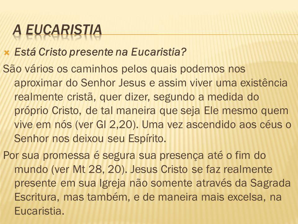  Está Cristo presente na Eucaristia? São vários os caminhos pelos quais podemos nos aproximar do Senhor Jesus e assim viver uma existência realmente