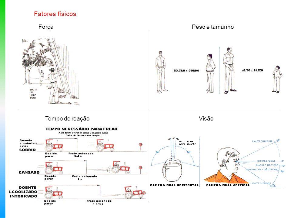 Fatores fisiológicos Os limites fisiológicos são afetados por: Fadiga Drogas, álcool e fumo Produtos químicos (agrotóxicos) Doenças Condições ambientais: temperatura, umidade, vibração, ruído, poeira, etc