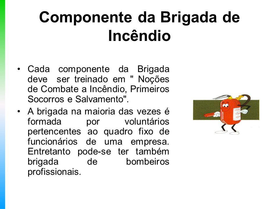 Componente da Brigada de Incêndio Cada componente da Brigada deve ser treinado em