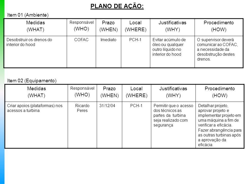 PLANO DE AÇÃO: Item 01 (Ambiente) Medidas (WHAT) Responsável (WHO) Prazo (WHEN) Local (WHERE) Justificativas (WHY) Procedimento (HOW) Desobstruir os d