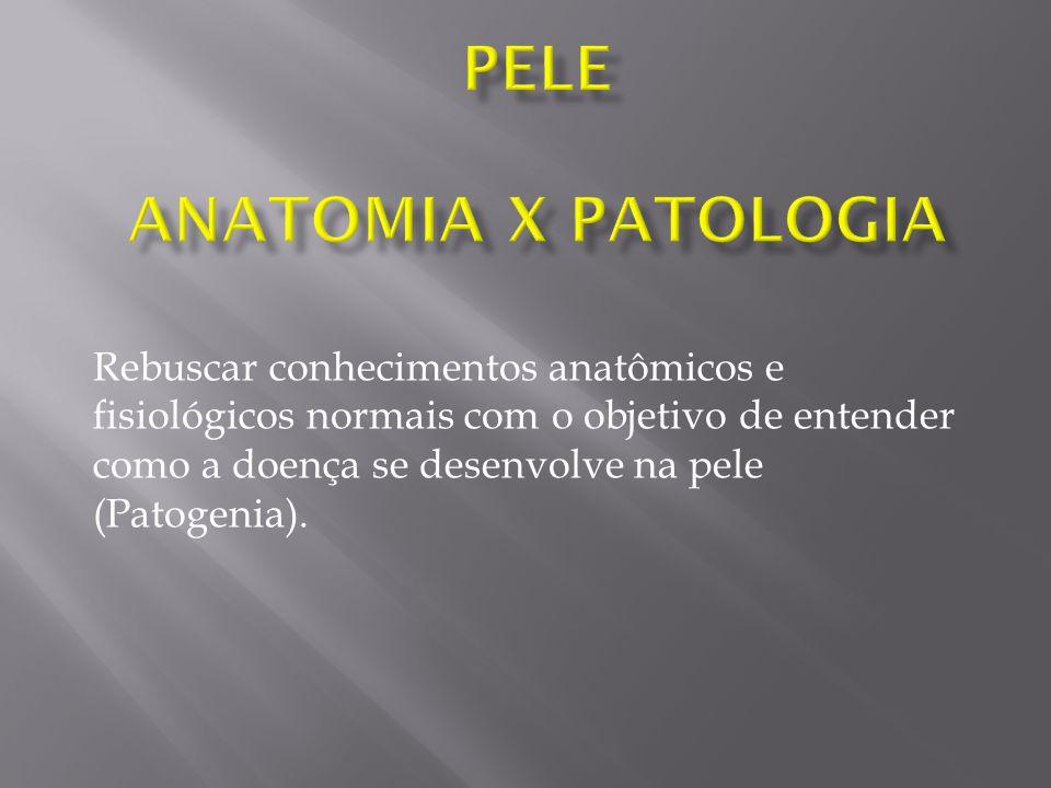 Rebuscar conhecimentos anatômicos e fisiológicos normais com o objetivo de entender como a doença se desenvolve na pele (Patogenia).