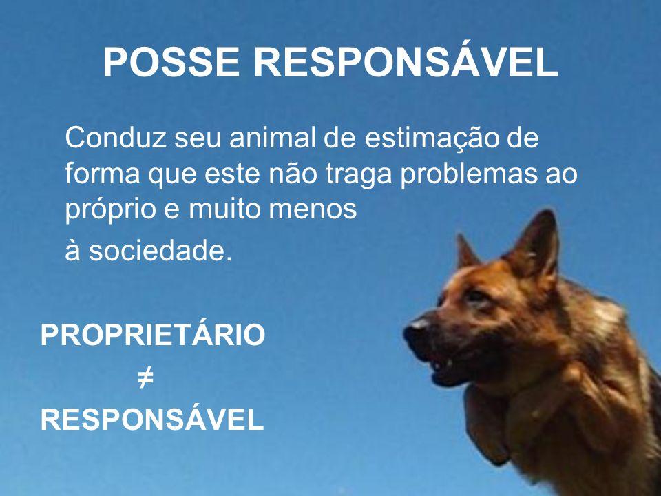 POSSE RESPONSÁVEL Conduz seu animal de estimação de forma que este não traga problemas ao próprio e muito menos à sociedade. PROPRIETÁRIO ≠ RESPONSÁVE