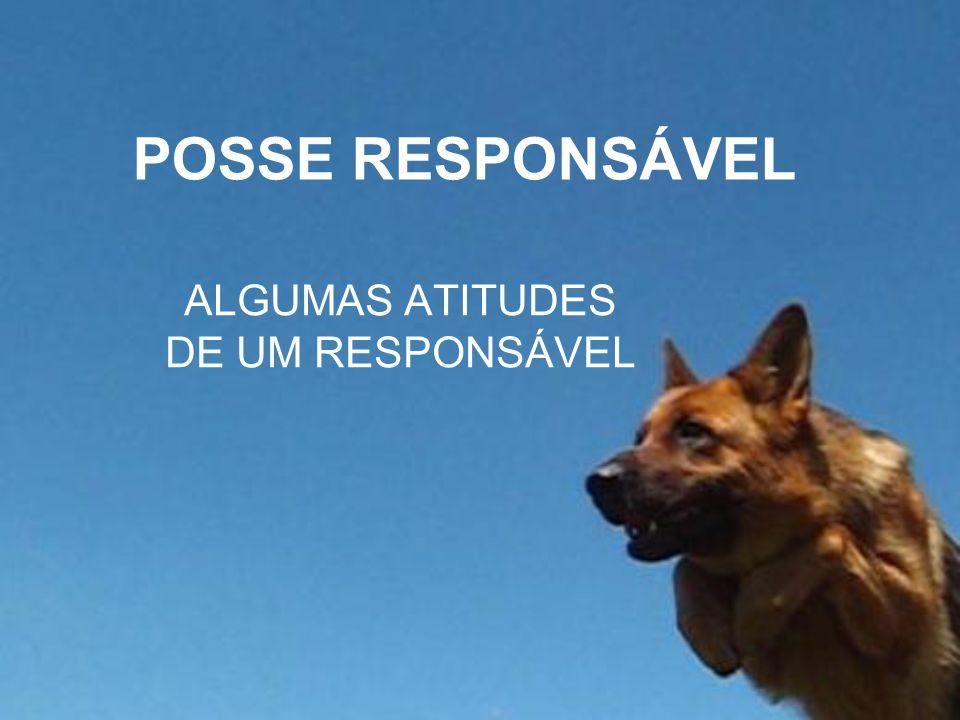 POSSE RESPONSÁVEL ALGUMAS ATITUDES DE UM RESPONSÁVEL