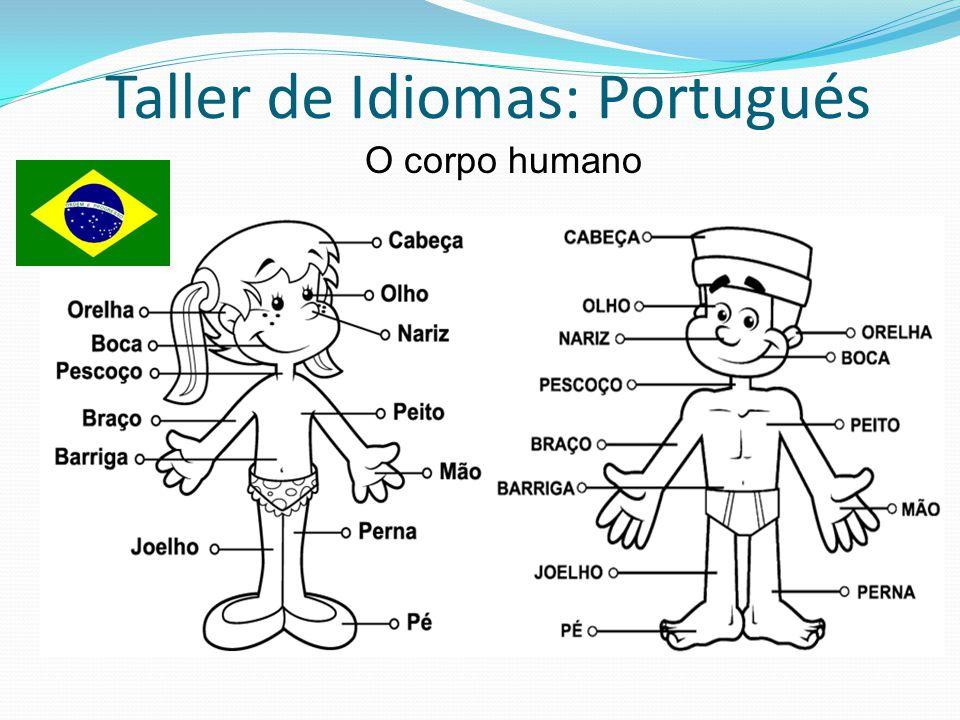 Taller de Idiomas: Portugués Descreva, estas palavras vão ajudar você alto / baixo estreito / largo (ancho) magro / gordo loiro / moreno grande / pequeno cabelo liso (lacio) / loiro (rubio) / ruivo (pelirojo) Fino / groso directo / esquerdo curto / longo-cumprido velho / jovem-moço branco / preto pontudo (puntiagudo) oval redondo quadrado