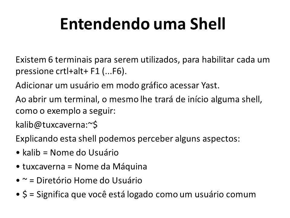 Outro exemplo de shell seria a seguinte: root@tuxcaverna:/home/kalib/imgs# Explicando esta shell podemos concluir: root = Superusuário do sistema tuxcaverna = Nome da Máquina /home/kalib/imgs = Árvore de Diretórios onde você se encontra no momento # = Significa que você está logado como root Mas também pode acontecer de você pegar uma shell que ainda não esteja logada.