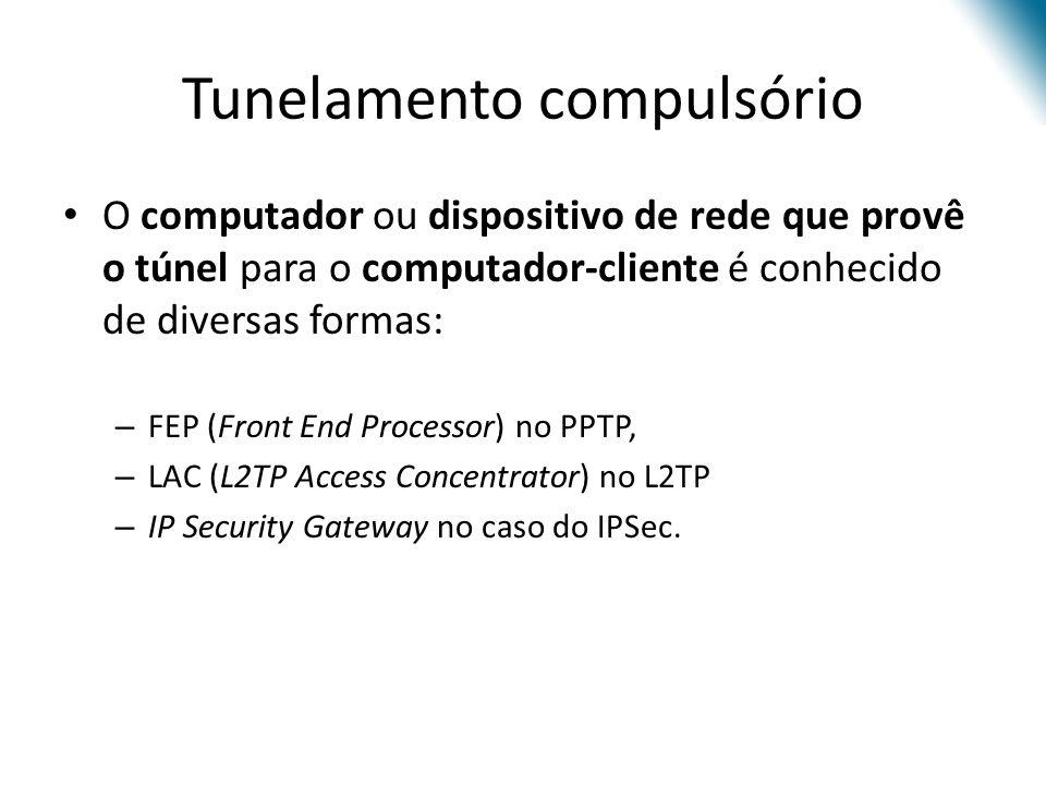 O computador ou dispositivo de rede que provê o túnel para o computador-cliente é conhecido de diversas formas: – FEP (Front End Processor) no PPTP, –