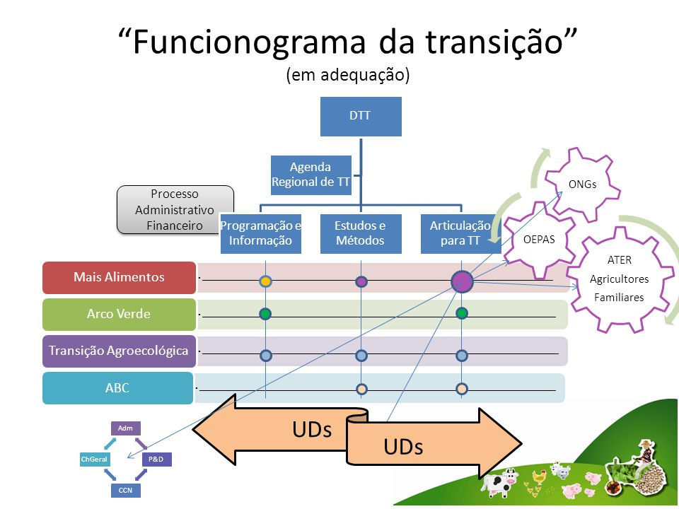 Processo Administrativo Financeiro Funcionograma da transição (em adequação) DTT Programação e Informação Estudos e Métodos Articulação para TT Agenda Regional de TT ____________________________________________________________________________________________________________________________ Mais Alimentos _____________________________________________________________________________________________________________________________ Arco Verde ______________________________________________________________________________________________________________________________ Transição Agroecológica ______________________________________________________________________________________________________________________________ ABC ATER Agricultores Familiares OEPAS ONGs UDs AdmP&DCCNChGeral