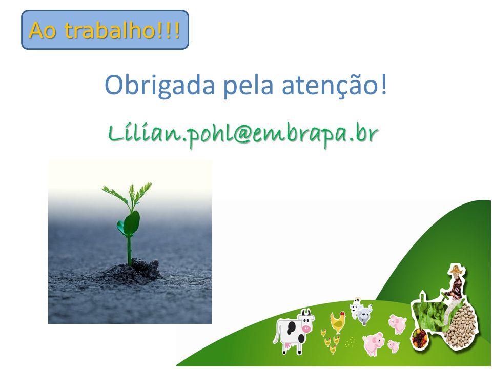 Ao trabalho!!! Lílian.pohl@embrapa.br Obrigada pela atenção!