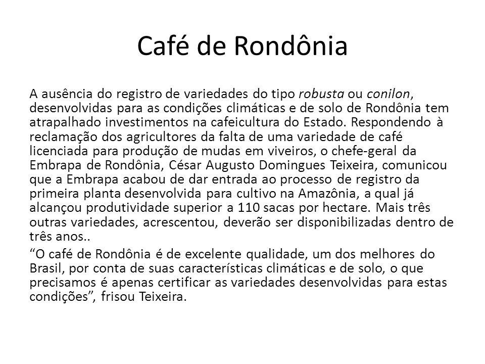 Café de Rondônia A ausência do registro de variedades do tipo robusta ou conilon, desenvolvidas para as condições climáticas e de solo de Rondônia tem