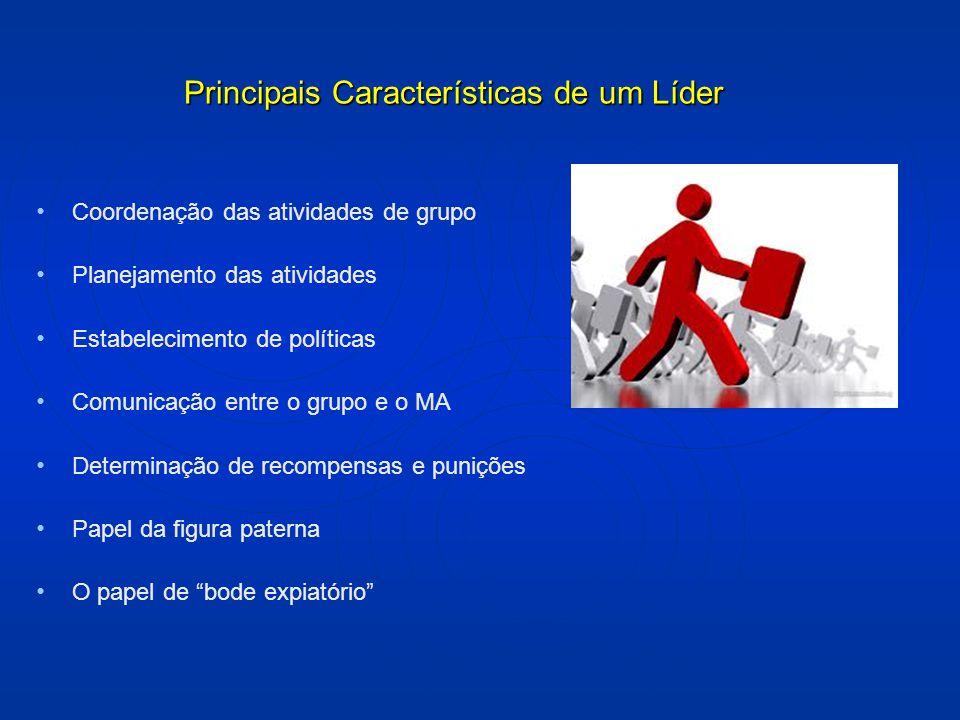 Coordenação das atividades de grupo Planejamento das atividades Estabelecimento de políticas Comunicação entre o grupo e o MA Determinação de recompen