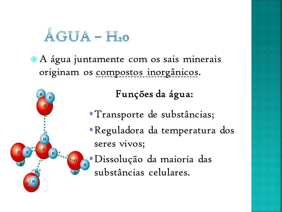  A água juntamente com os sais minerais originam os compostos inorgânicos. Funções da água:  Transporte de substâncias;  Reguladora da temperatura