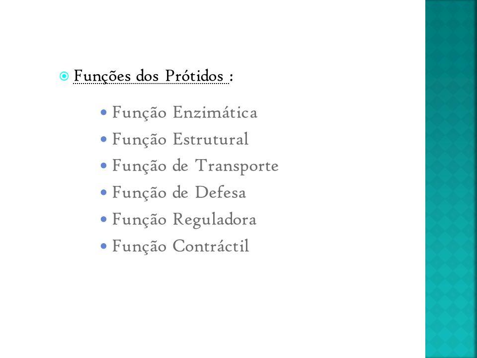 Funções dos Prótidos : Função Enzimática Função Estrutural Função de Transporte Função de Defesa Função Reguladora Função Contráctil