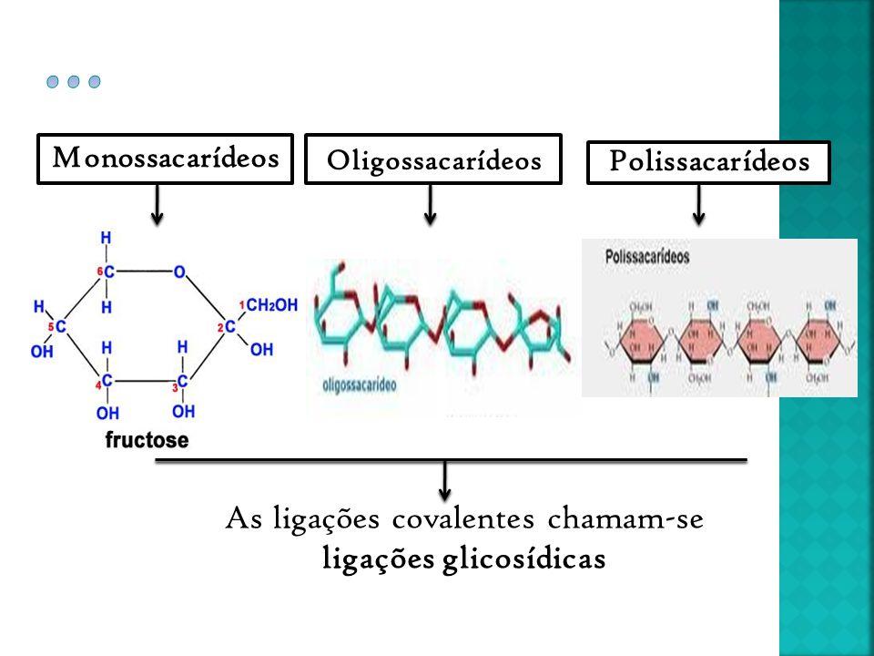 Monossacarídeos Oligossacarídeos Polissacarídeos As ligações covalentes chamam-se ligações glicosídicas