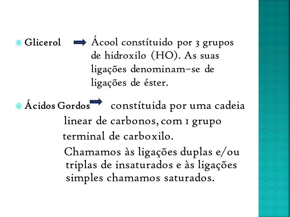  Glicerol  Ácidos Gordos constítuida por uma cadeia linear de carbonos, com 1 grupo terminal de carboxilo. Chamamos às ligações duplas e/ou triplas