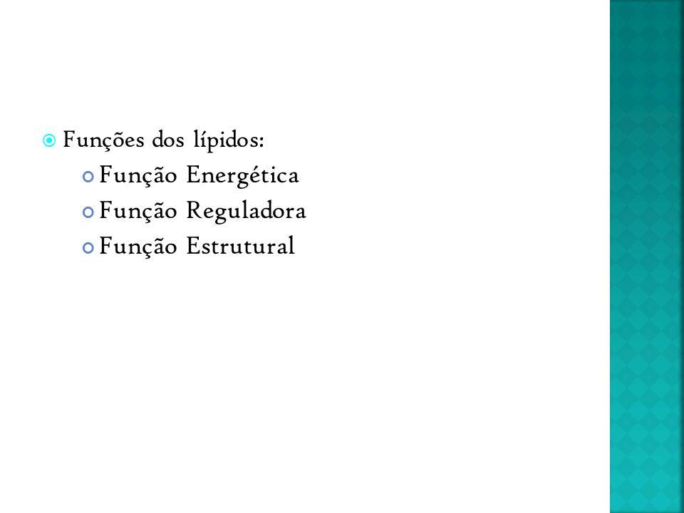  Funções dos lípidos: Função Energética Função Reguladora Função Estrutural