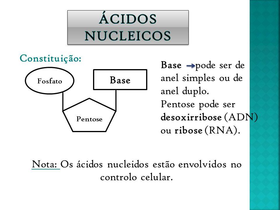Constituição: Pentose Fosfato Base Base pode ser de anel simples ou de anel duplo. Pentose pode ser desoxirribose (ADN) ou ribose (RNA). Nota: Os ácid