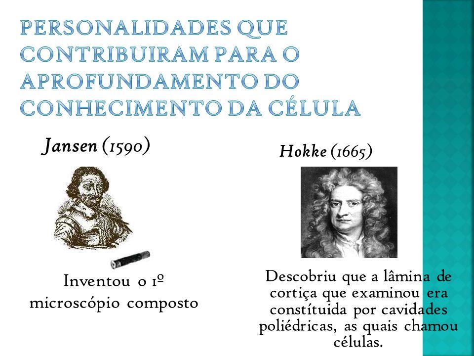 Inventou o 1º microscópio composto Jansen (1590) Hokke (1665) Descobriu que a lâmina de cortiça que examinou era constítuida por cavidades poliédricas