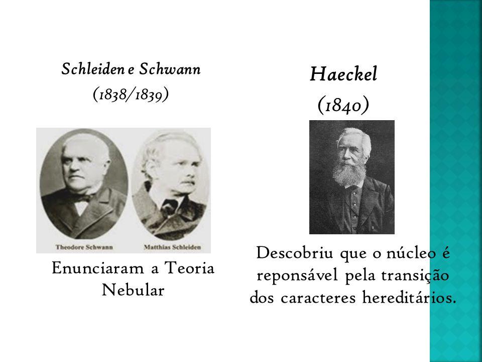 Schleiden e Schwann (1838/1839) Haeckel (1840) Enunciaram a Teoria Nebular Descobriu que o núcleo é reponsável pela transição dos caracteres hereditár