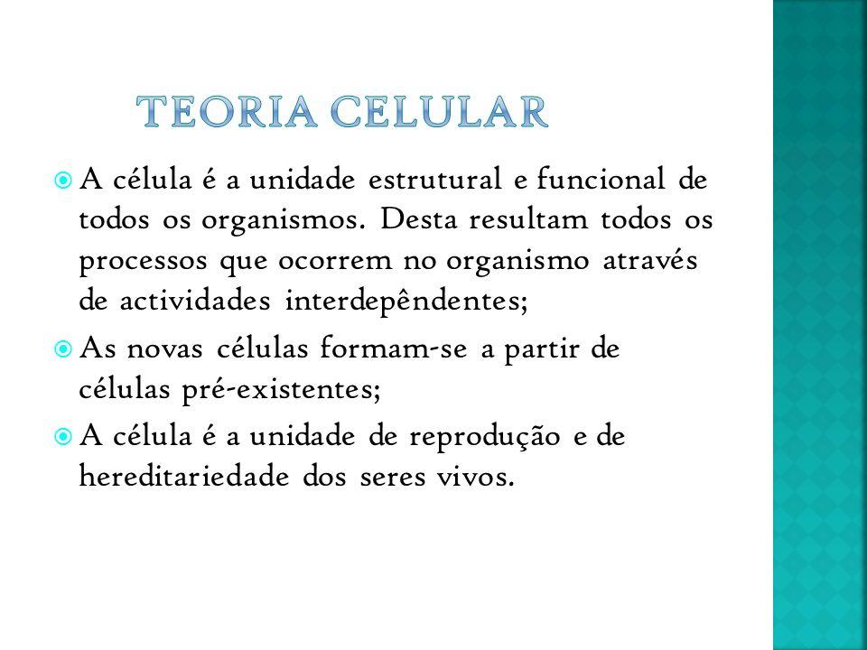  A célula é a unidade estrutural e funcional de todos os organismos. Desta resultam todos os processos que ocorrem no organismo através de actividade