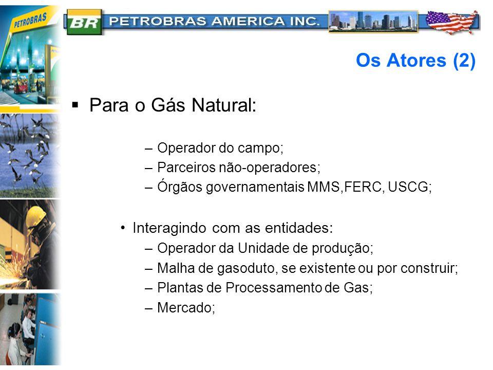 Os Atores (2)  Para o Gás Natural: –Operador do campo; –Parceiros não-operadores; –Órgãos governamentais MMS,FERC, USCG; Interagindo com as entidades