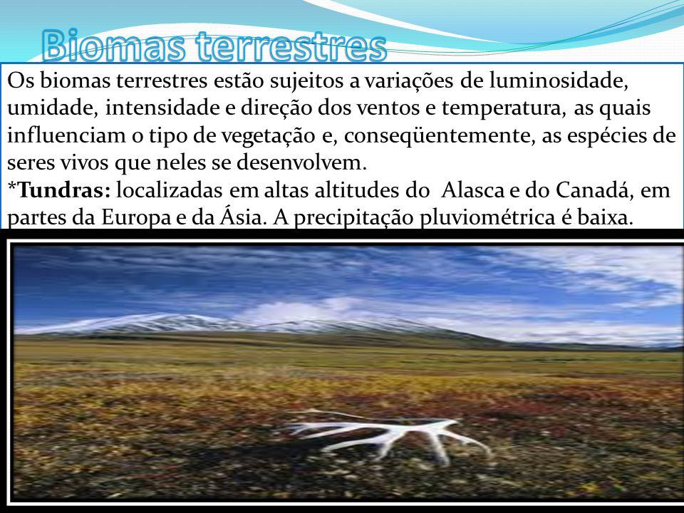 Os biomas terrestres estão sujeitos a variações de luminosidade, umidade, intensidade e direção dos ventos e temperatura, as quais influenciam o tipo de vegetação e, conseqüentemente, as espécies de seres vivos que neles se desenvolvem.