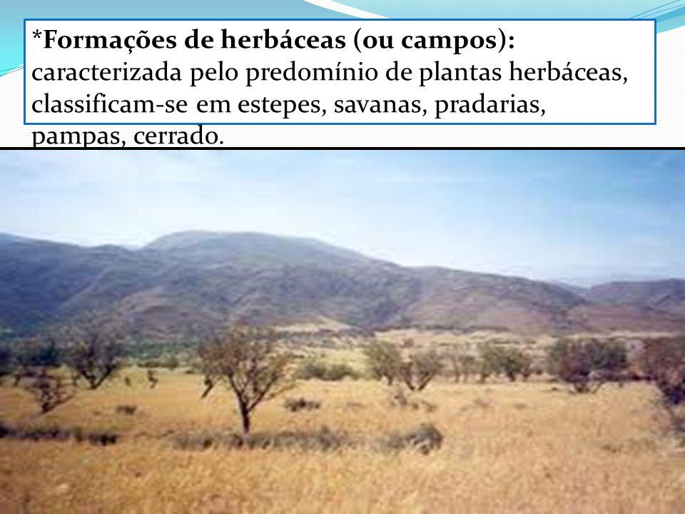 *Formações de herbáceas (ou campos): caracterizada pelo predomínio de plantas herbáceas, classificam-se em estepes, savanas, pradarias, pampas, cerrad