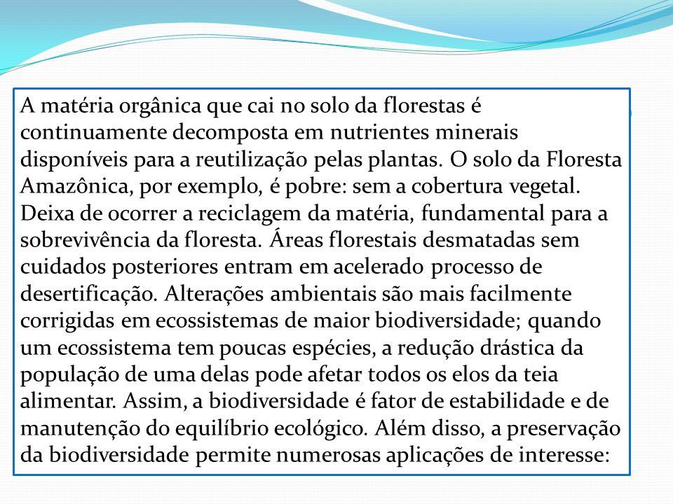 A matéria orgânica que cai no solo da florestas é continuamente decomposta em nutrientes minerais disponíveis para a reutilização pelas plantas.