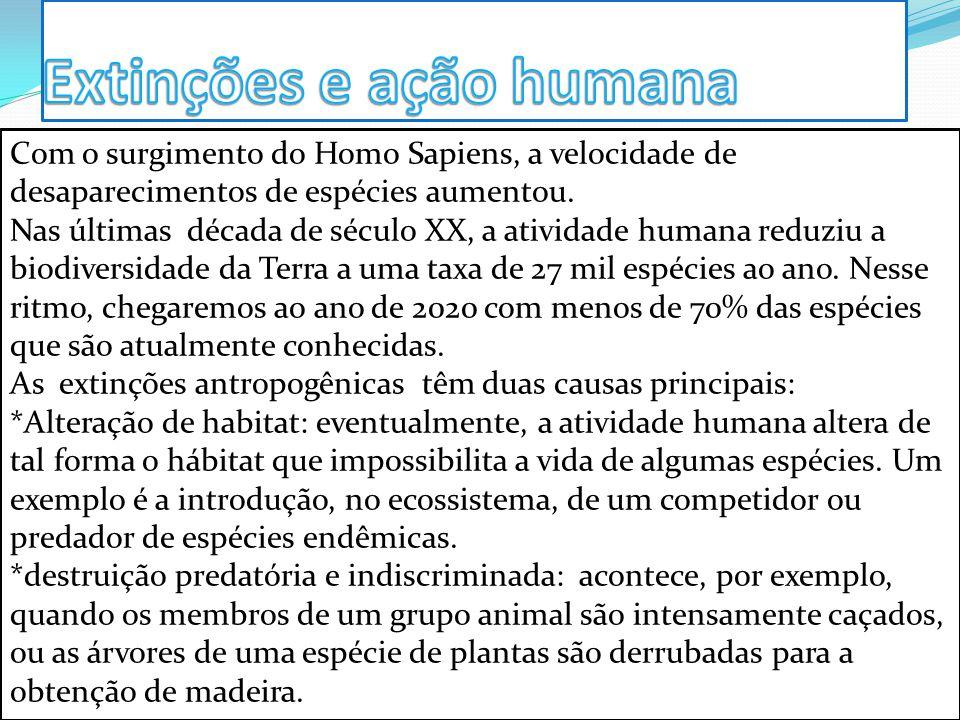 Com o surgimento do Homo Sapiens, a velocidade de desaparecimentos de espécies aumentou. Nas últimas década de século XX, a atividade humana reduziu a