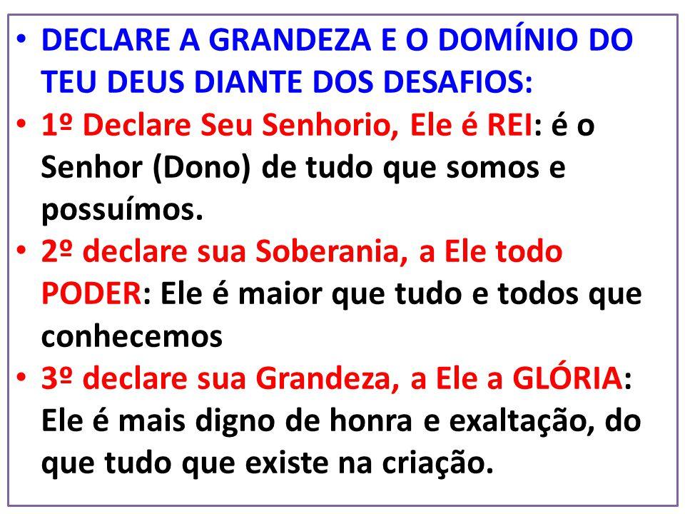 DECLARE A GRANDEZA E O DOMÍNIO DO TEU DEUS DIANTE DOS DESAFIOS: 1º Declare Seu Senhorio, Ele é REI: é o Senhor (Dono) de tudo que somos e possuímos. 2