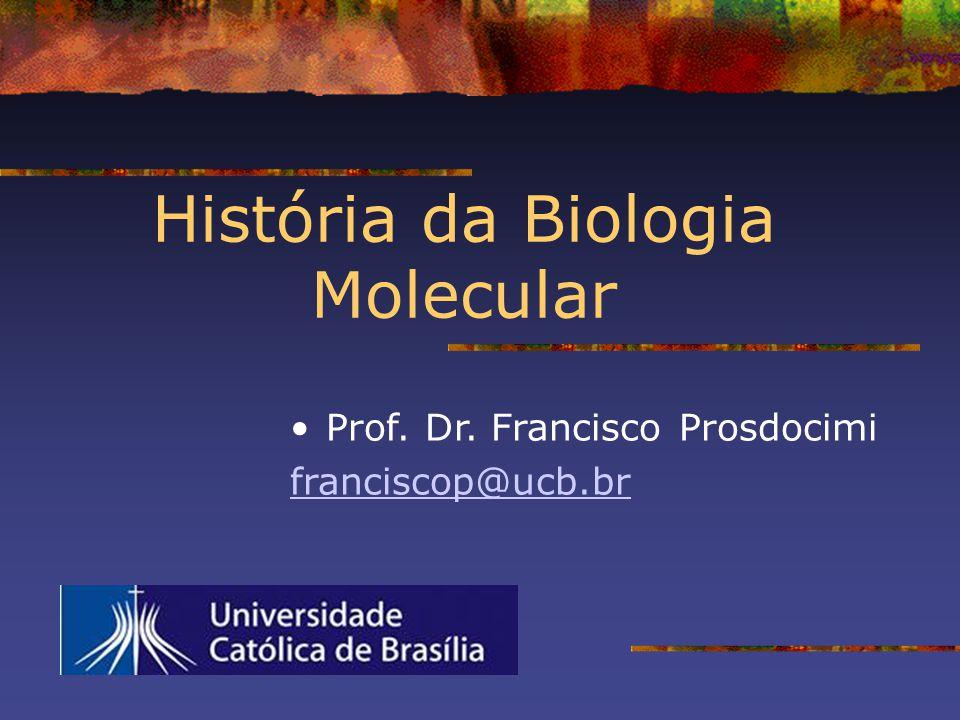 O caminho da química de proteínas Prof.Dr.