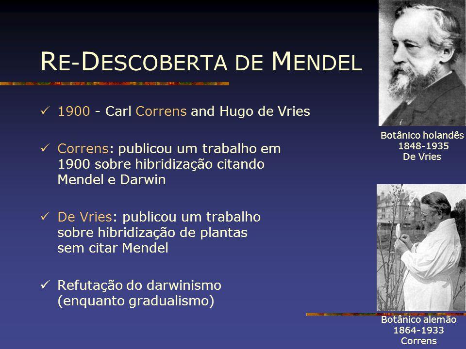 R E- D ESCOBERTA DE M ENDEL 1900 - Carl Correns and Hugo de Vries Correns: publicou um trabalho em 1900 sobre hibridização citando Mendel e Darwin De