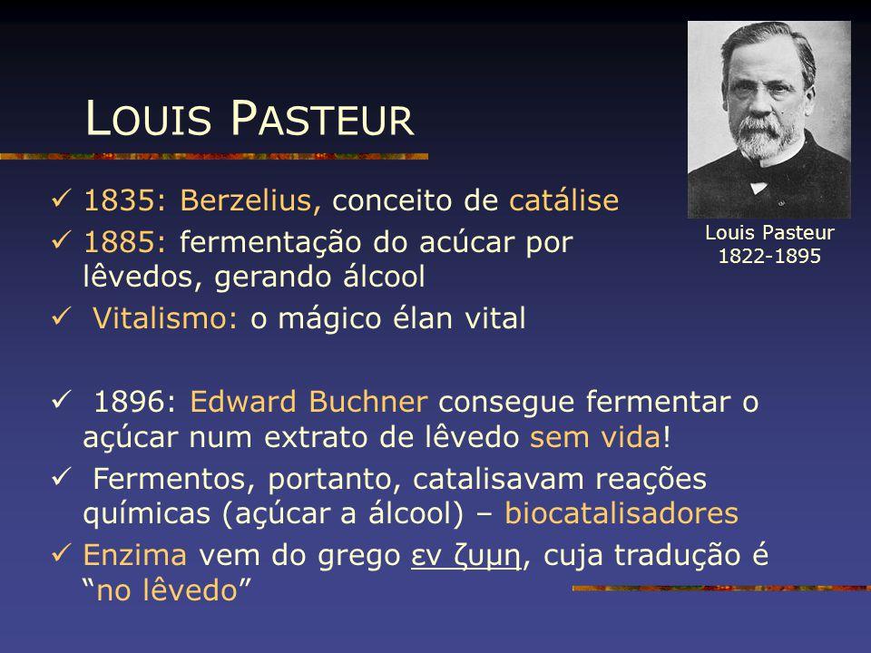 L OUIS P ASTEUR 1835: Berzelius, conceito de catálise 1885: fermentação do acúcar por lêvedos, gerando álcool Vitalismo: o mágico élan vital 1896: Edw