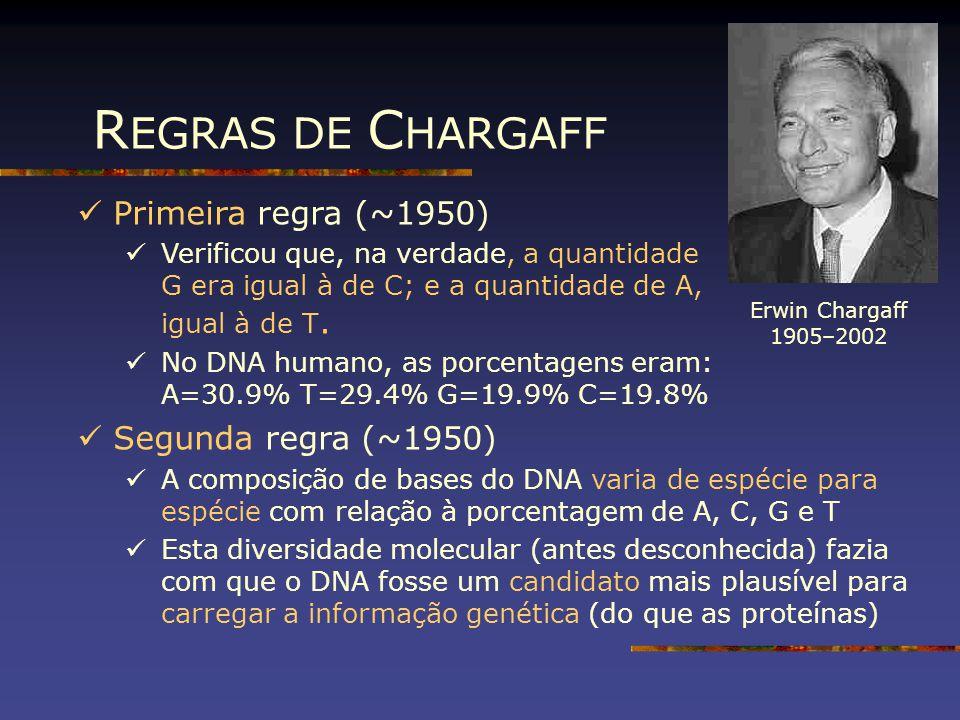 R EGRAS DE C HARGAFF Primeira regra (~1950) Verificou que, na verdade, a quantidade G era igual à de C; e a quantidade de A, igual à de T. No DNA huma