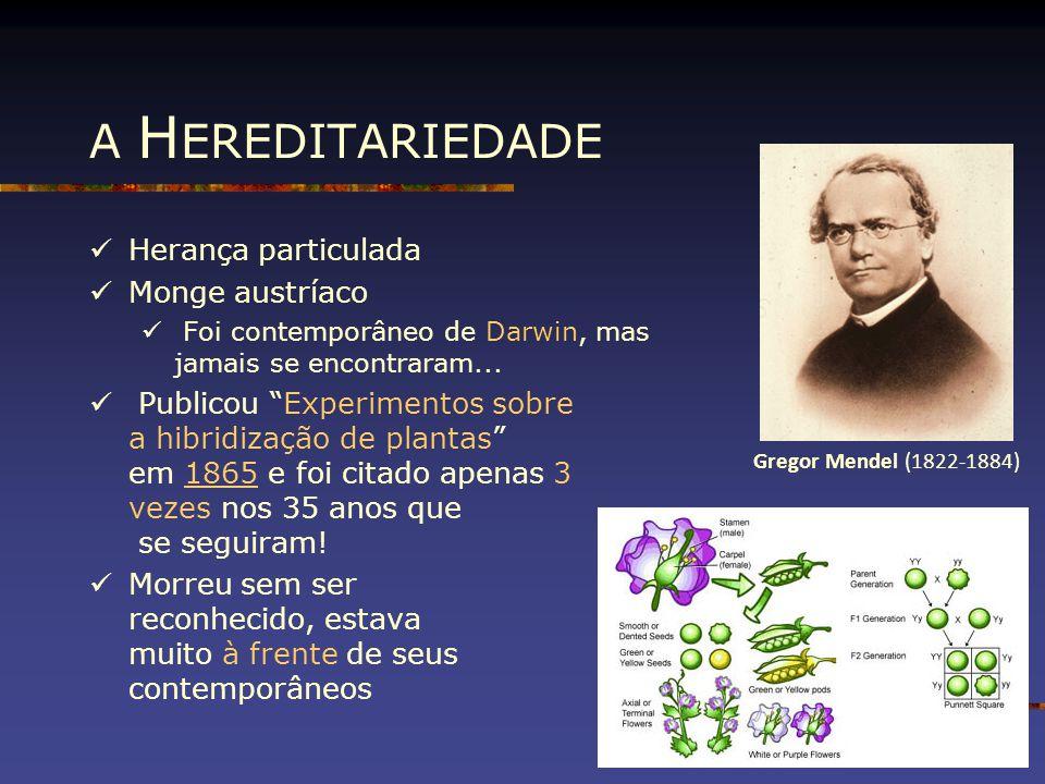 """A H EREDITARIEDADE Herança particulada Monge austríaco Foi contemporâneo de Darwin, mas jamais se encontraram... Publicou """"Experimentos sobre a hibrid"""