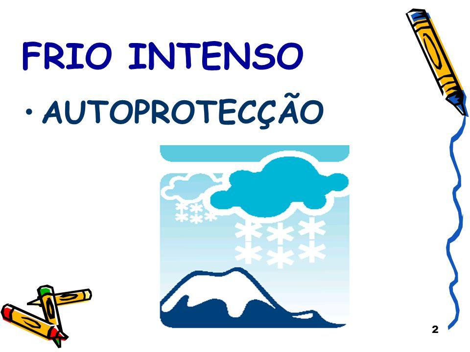 13 DURANTE A ÉPOCA DE FRIO Quando sair Não exerça actividades físicas violentas (como tentar desempanar o carro ou limpar neve).