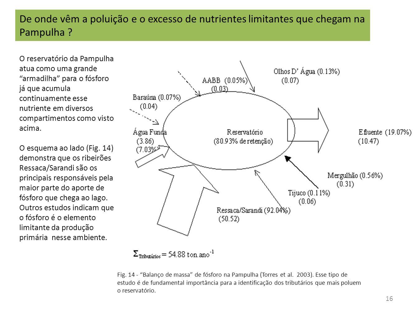 """Fig. 14 - """"Balanço de massa"""" de fósforo na Pampulha (Torres et al. 2003). Esse tipo de estudo é de fundamental importância para a identificação dos tr"""