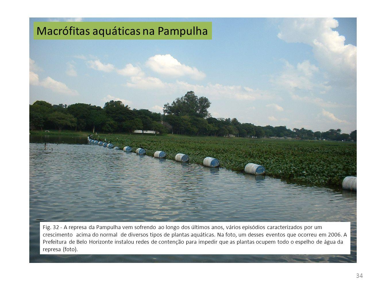 34 Macrófitas aquáticas na Pampulha Fig. 32 - A represa da Pampulha vem sofrendo ao longo dos últimos anos, vários episódios caracterizados por um cre