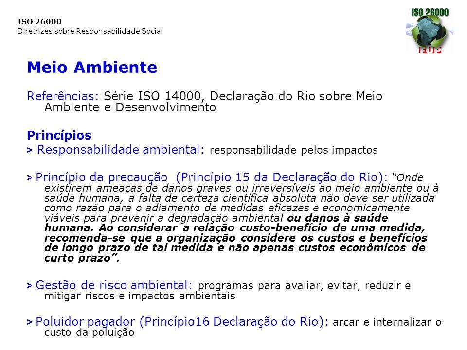 ISO 26000 Diretrizes sobre Responsabilidade Social Meio Ambiente Referências: Série ISO 14000, Declaração do Rio sobre Meio Ambiente e Desenvolvimento