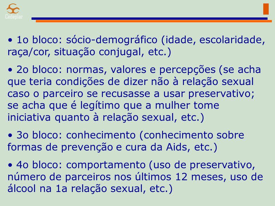 1o bloco: sócio-demográfico (idade, escolaridade, raça/cor, situação conjugal, etc.) 2o bloco: normas, valores e percepções (se acha que teria condiçõ