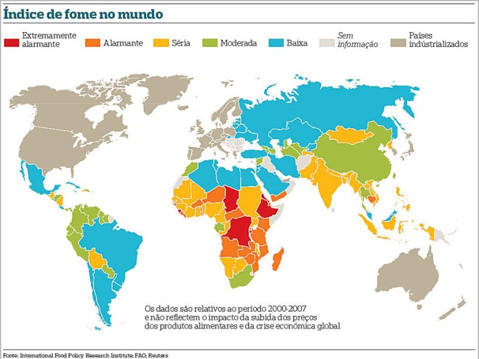 (…)uma em cada sete pessoas no planeta vai para a cama com fome todas as noites. (Fonte: FAO, 2012)FAO