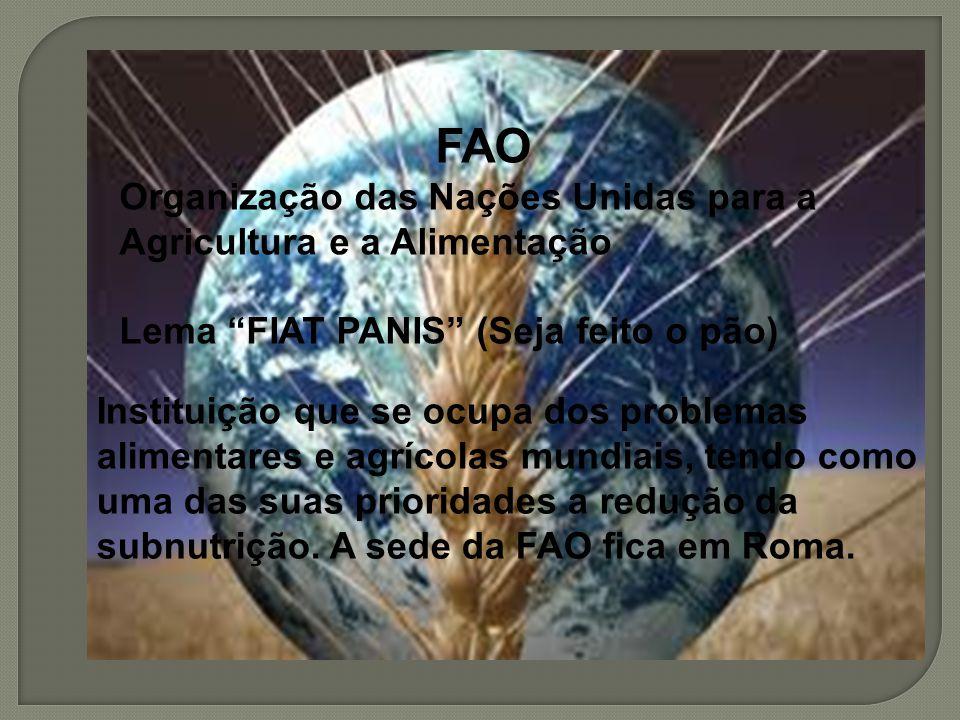 Instituição que se ocupa dos problemas alimentares e agrícolas mundiais, tendo como uma das suas prioridades a redução da subnutrição. A sede da FAO f