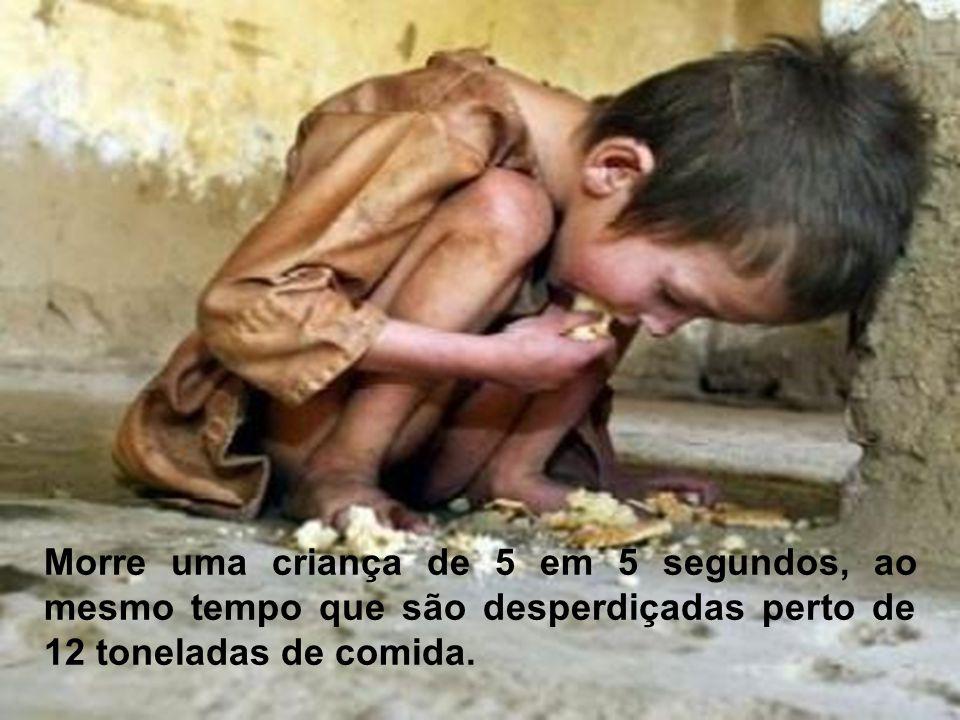 Morre uma criança de 5 em 5 segundos, ao mesmo tempo que são desperdiçadas perto de 12 toneladas de comida.