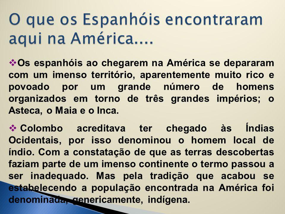  Os espanhóis ao chegarem na América se depararam com um imenso território, aparentemente muito rico e povoado por um grande número de homens organiz