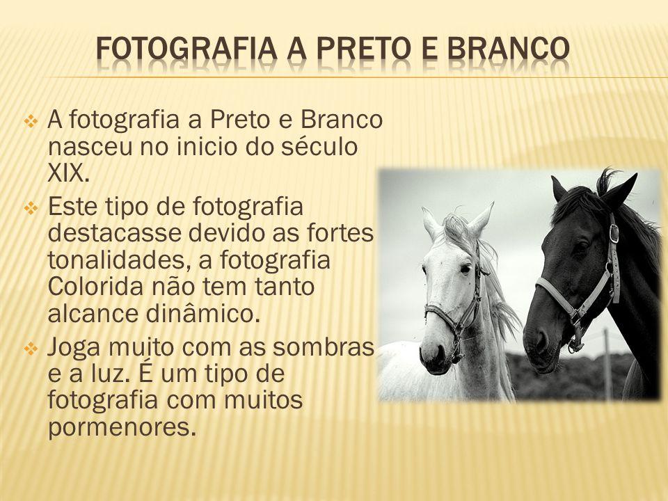  A fotografia a Preto e Branco nasceu no inicio do século XIX.