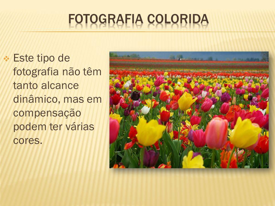  Este tipo de fotografia não têm tanto alcance dinâmico, mas em compensação podem ter várias cores.