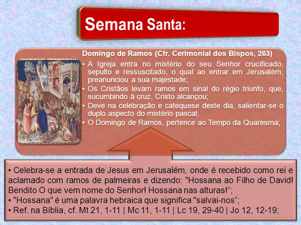 Celebra-se a entrada de Jesus em Jerusalém, onde é recebido como rei e aclamado com ramos de palmeiras e dizendo: Hossana ao Filho de David.