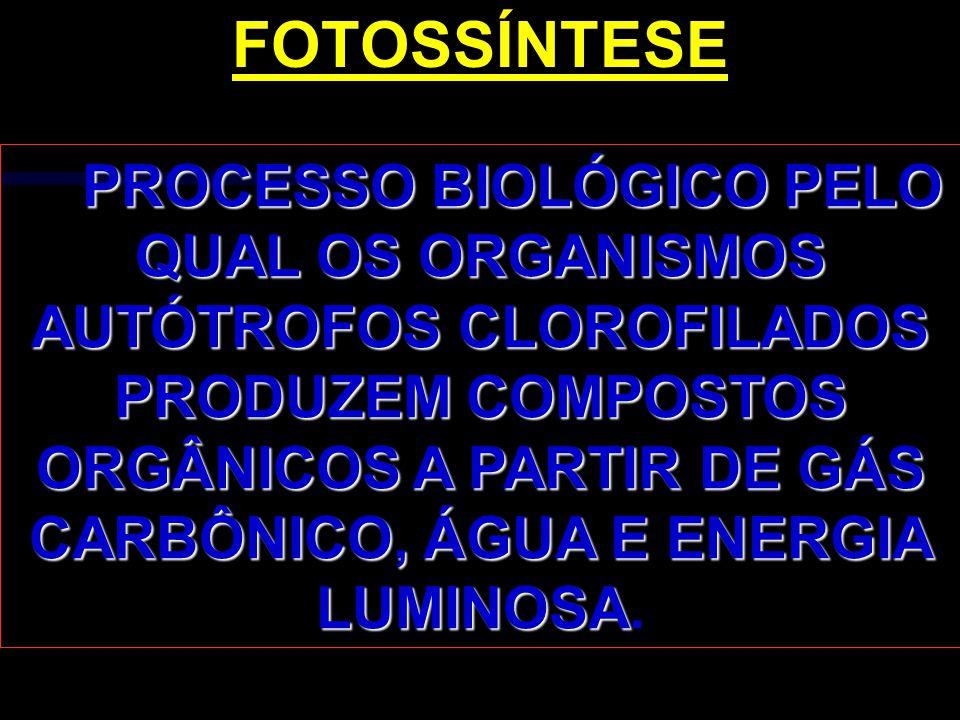 P ROCESSO BIOLÓGICO PELO QUAL OS ORGANISMOS AUTÓTROFOS CLOROFILADOS PRODUZEM COMPOSTOS ORGÂNICOS A PARTIR DE GÁS CARBÔNICO, ÁGUA E ENERGIA LUMINOSA. F