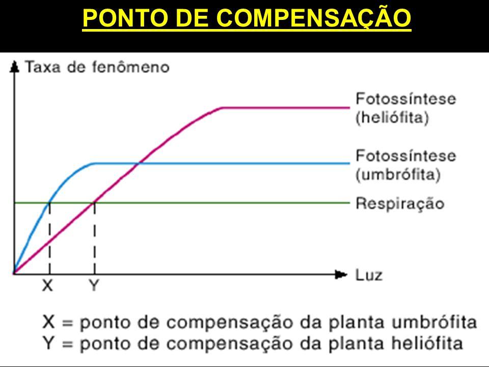PONTO DE COMPENSAÇÃO