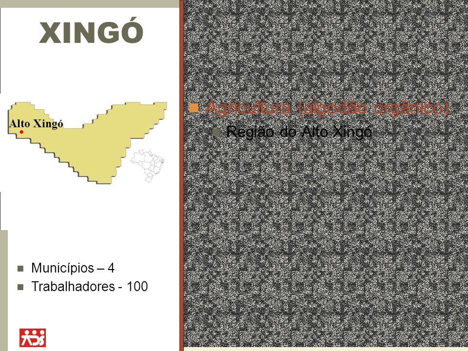 XINGÓ Agricultura (algodão orgânico) Região do Alto Xingó Alto Xingó Municípios – 4 Trabalhadores - 100