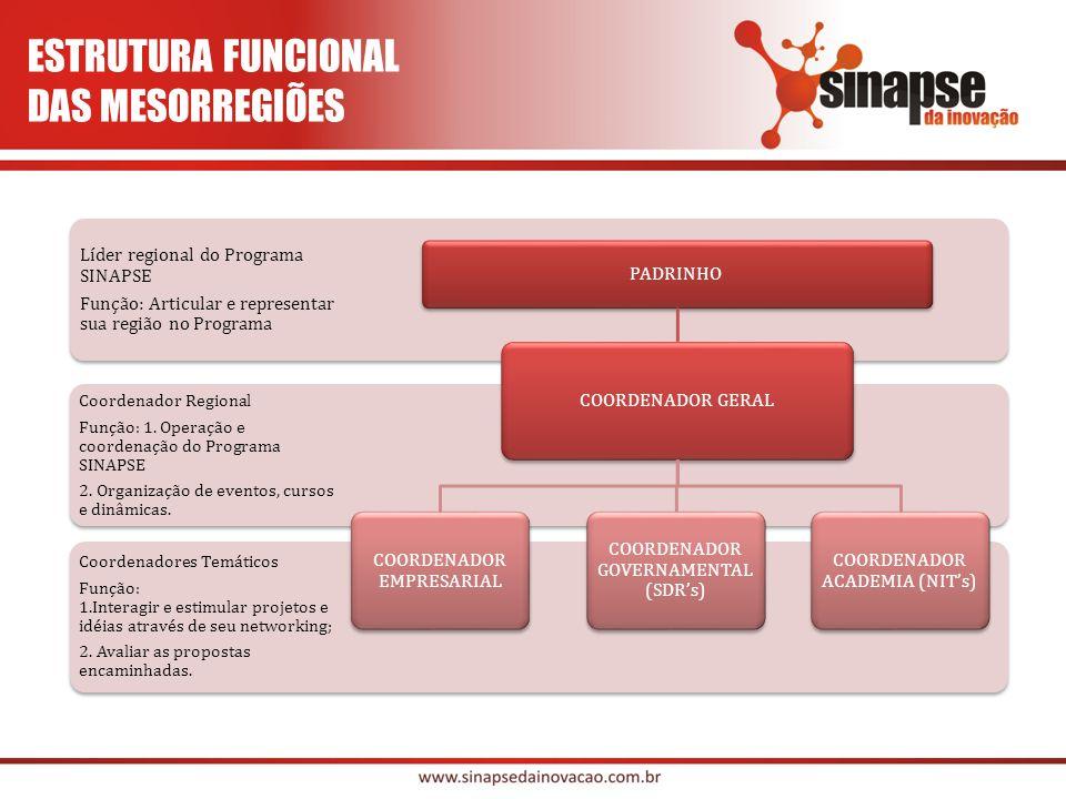 Coordenadores Temáticos Função: 1.Interagir e estimular projetos e idéias através de seu networking; 2.